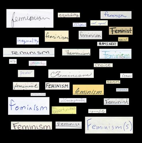05Feminism(s)ThatFWordMissen